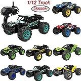 Omiky® Kinder Auto Spielzeug, 1: 12 2,4G Fernbedienung 2WD Offroad Monster Truck High Speed RTR RC Auto Spielzeug (A)