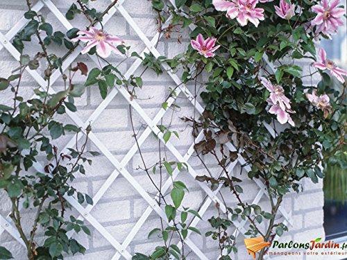 Treillis extensible plastique blanc - 50x150cm