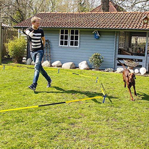 Schecker Longier Set für Hunde mit Einem Radius von 3-3,5 m stärkt Konzentration Aufmerksamkeit fördert körperliche und geistige Auslastung - Hindernis-ausrüstung