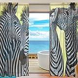 2-teilig: jstel Zebra Afrika Muster Print Tüll Polyester Tür Voile Fenster Vorhang Sheer Vorhang Panels für Schlafzimmer Wohnzimmer Fall Zwei scheibenelementen Set 139,7x 198,1cm, Polyester, mehrfarbig, 55 x 78 Inch