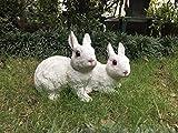 Wonderland Pair of Rabbit decoration ( garden decor , home decor , gifting )