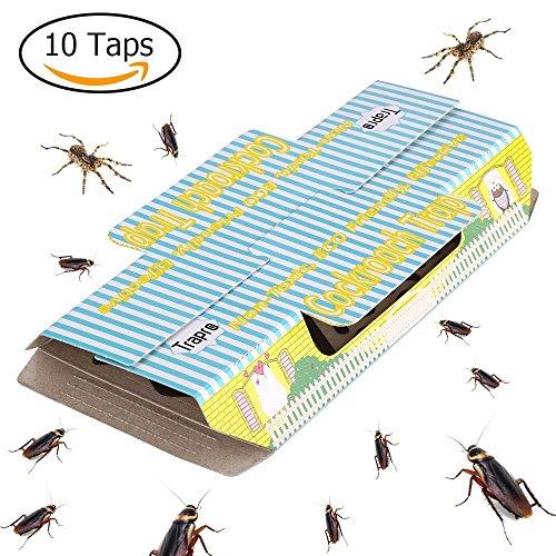 cookey-cockroach-piges-pour-la-lutte-contre-les-parasites-accueil-kill-roaches-fourmis-spiders-et-au