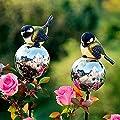 Gärtner Pötschke Rosenkugeln mit Kohlmeisen, 2er-Set von Gärtner Pötschke - Du und dein Garten