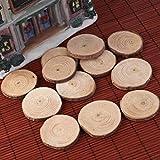 Pixnor Holzscheiben 30st 4-5 CM Holz Log Scheiben Scheiben für DIY Handwerk Hochzeit Mittelstücke Test