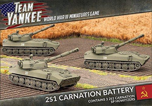 2s1-carnation-battery