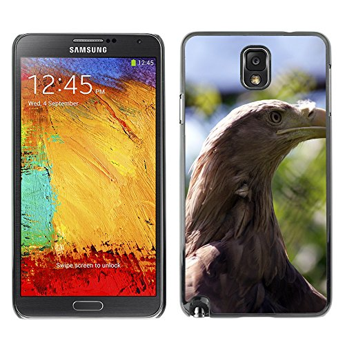 Just Phone Cover Bild Hart Handy Schwarz Schutz Case Cover Schale Etui // M00138333 Adler Vogel Majestät Schnabel Outside // Samsung Galaxy Note 3 III N9000 N9002 N9005