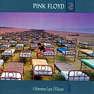 A Momentary Lapse of Reason (B000025078) | Amazon Products