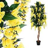 Nexos Künstlicher Goldregen Kunstpflanze Kunstbaum mit vielen Zweigen herrlichen Blütendolden Echtholz-Stamm und Topf - Gesamthöhe 190 cm - grün braun gelb