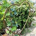 Gartenzaubereien Beetstecker Herzchen 2er-Set von Po bei Du und dein Garten