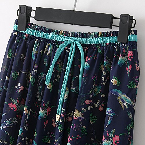 Ecollection® Damen Vintage Faltenrock Chiffon Plissee Rock Flora Long Skirt CH9