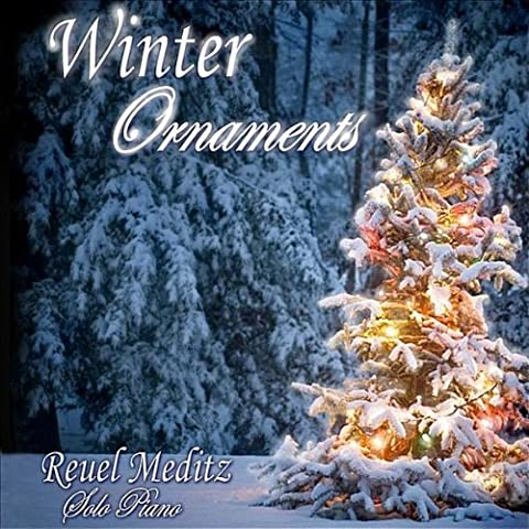 Winter Ornaments by Meditz, Reuel (2010-11-30)