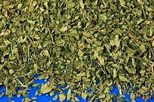 Cerfeuil graines, herbes, graines 100+, organiques, non Ogm, utilisez l'herbe fraîche à saveur