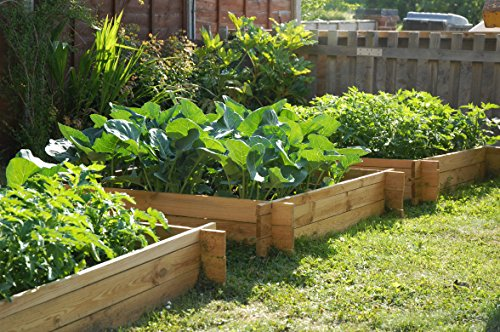 The Chamberlain Wooden Raised Grow Bed - 1m x 1m