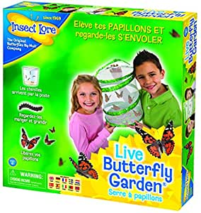 Insect Lore 8010FR - Elevage papillons - Vert