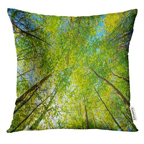 Throw Pillow Cover Spring Sun Shining Through Canopy of Tall Trees Woods Sunlight in Forest Summer Nature Upper Branches Decorative Pillow Case Home Decor Square 18x18 Inches Pillowcase (Friends-halloween Tree Die)