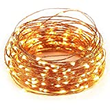 15M 50FT 150 LED Warm White USB Powered Copper String LED Decorative Lights