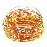 #4: 15M 50FT 150 LED Warm White USB Powered Copper String LED Decorative Lights