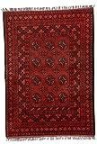 Parwis Orientteppich für Wohnzimmer, Schlafzimmer, Küche, Flur, handgeknüpft, Afghan Bouchara, reine Schurwolle, 150 x 200 cm, rot