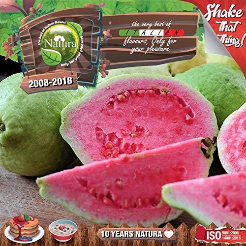 DAMPF SHOP - 100ml Natura E Liquid, Shake n Vape für Ihre e-Zigarette, Nikotinfrei - Forest Guavaz (Etwas saure Guaven)