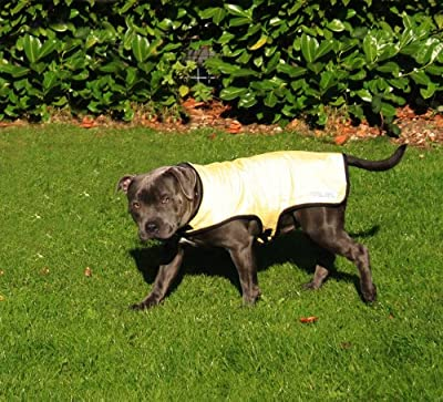 Prestige Cool Coat for Dogs, M, Yellow from PREXV