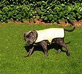 Prestige Kühlender Hundemantel