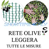 Rete raccolta Olive Leggera 40gr/mq telo resistente e maneggevole 4x8 m