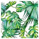 murando - Tapete selbstklebend 10m Wandtattoo dekorative Möbelfolie Dekorfolie Fotofolie Panel Wandaufkleber Wandposter Wandsticker - Tropische Blätter Monstera grün weiß b-C-0261-j-a