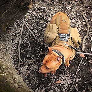 OUTRY Tactical Dog Training Harness MOLLE Vest with Pulling Handle, 4 Sizes Available for both Small and Large Dogs from OUTRY