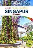 Singapur de cerca (Lonely Planet-Guías De cerca)