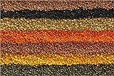 Poster 100 x 70 cm: Colorful Lentils di Elena Schweitzer - Stampa Artistica Professionale, Nuovo Poster Artistico