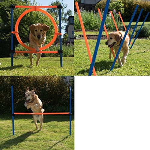 Complete Enjoyable Dog Agility Course – Contains Agility Hurdle, Agility Slalom Poles, Jumping Hoop – Fun for your Dogs