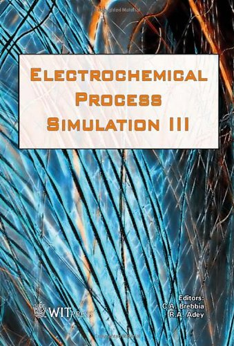 Simulation of Electrochemical Processes: III: 65 (WIT Transactions on Engineering Sciences)