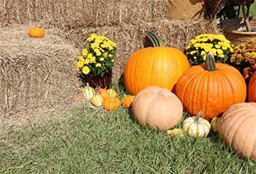 (YongFoto 1,5x1m Polyester Foto Hintergrund Halloween Kürbis Blühen Frische Blumen Grasfeld Strohballen Kostüm Fotografie Hintergrund für Fotoshooting Portraitfotos Party Kinder Requisiten)