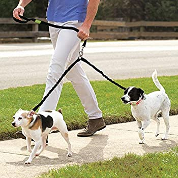 Pecute Hundeleine Doppelleine 2 Hunde Reflektierende Elastische Nylonband 1.6 M Schwarz 14