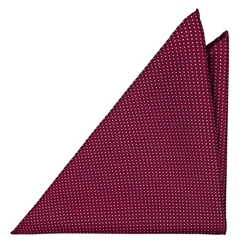 Notch Einstecktuch aus Seide für Herren - Rote Basis und winzige weisse Pünktchen (Winzige Seide)