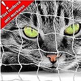 Filet DE Protection Balcon pour Chat 6 X 3 M-Maille RENFORCÉE Anti MORSURES