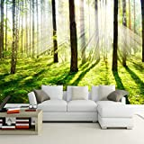 Leegt 3D Tapete Wallpaper Mural Custom 3D Fototapete Hd Sunshine Wald Wohnzimmer Schlafzimmer Tv Hintergrund Wandbild Bilder Wallpaper Dekor 300cmX250cm