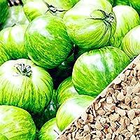 Suchergebnis Auf Amazonde Für Winterhart Gemüse Samen Garten