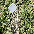 KINGLAKE Plastik Groß Pflanzenstecker Pflanzenstecker Dick, Beschriften Kunststoff Stecketiketten Pflanzen Etiketten von JH auf Du und dein Garten
