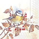 Ideal Home Serie 3-lagig Papier Lunch-Servietten, 20-count, 6,5x 6.5-inches gefaltet, Sweet Little Bird