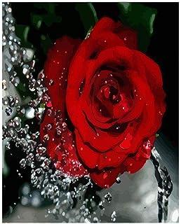 Medigy Valentine Gift Set Malen nach Zahlen mit Holz Rahmen 16x20IN ungiftig Acrylpigmente-Love-Serie Celebration
