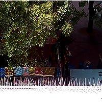DISSUASORE PER VOLATILI, SPUNTONI ANTI UCCELLI IN ACCIAIO - Repellente permanente per piccioni - Grande deterrente per uccelli, corvi e colombi - Facile da montare e da rimuovere - Mantiene sotto controllo i grandi parassiti della casa e del giardino - SODDISFAZIONE GARANTITA - Copertura di 3 metri