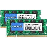 TECMIYO 4GB Kit (2x2GB) DDR2 667MHz PC2-5300 PC2-5400 DDR2 667 (200 Pin) SODIMM Laptop Memory