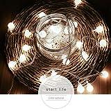 TAOtTAO Feenhafte Laterne im Freien für Partei-Garten-Ausgangshochzeits-Beleuchtungs-Dekoration (B)