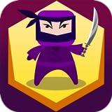 Ninja Dash Hit