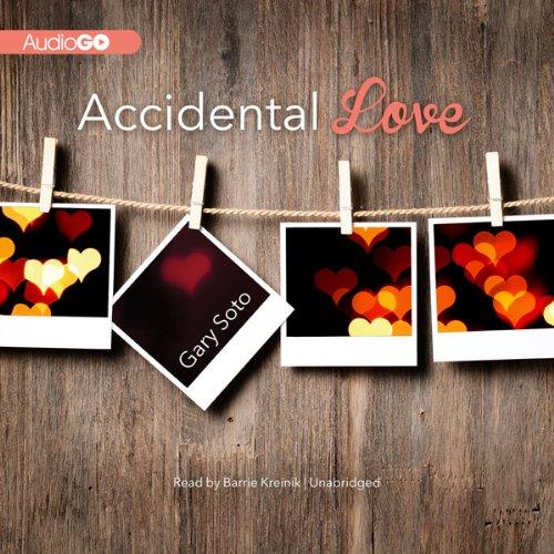 Accidental Love  Audiolibri