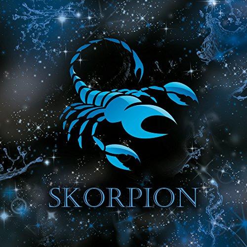 Apple iPhone 5s Housse Étui Protection Coque Signes du zodiaque Scorpion Scorpion Sac Downflip noir