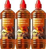 Gel allume-feu pour tous types de charbons – Pâte de combustion 1000 ml – Gel d'allumage liquide pour barbecue et cheminée Sans odeur 3 Liter