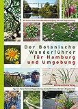 Der Botanische Wanderführer für Hamburg und Umgebung - Hans-Helmut Poppendieck, Gisela Bertram, Barbara Engelschall