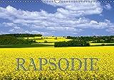 Rapsodie (Wandkalender 2018 DIN A3 quer): Rapsfelder zählen bei Naturfotografen zu den beliebtesten Fotomotive. Dieser K